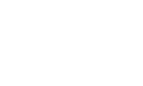 Northern Productions Logo
